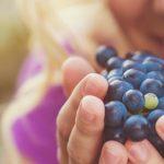 Todo lo que debes saber sobre los vinos afrutados