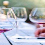 cata vino rioja y vino garnacha