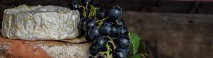 Aromas del vino