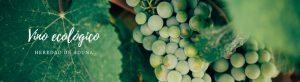Diferencia vino ecologico y vino tradicional